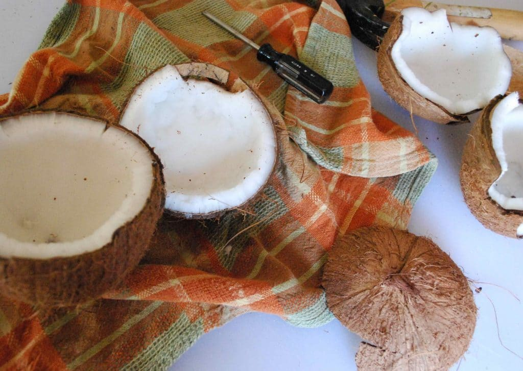 How to Open a fresh coconut