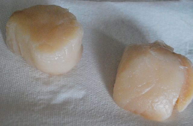 two large scallops on a paper towel