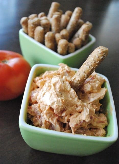 Spicy Tomato and Onion Dip Recipe