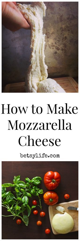 How to make mozzarella cheese at home