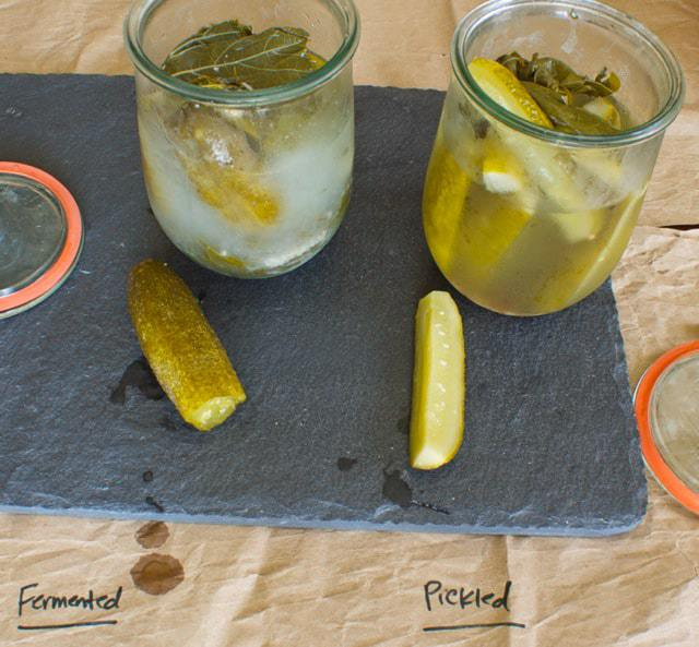 Fermented Pickles vs. Regular Pickled Pickles