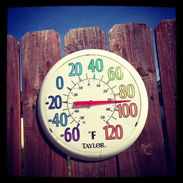 winter temperature