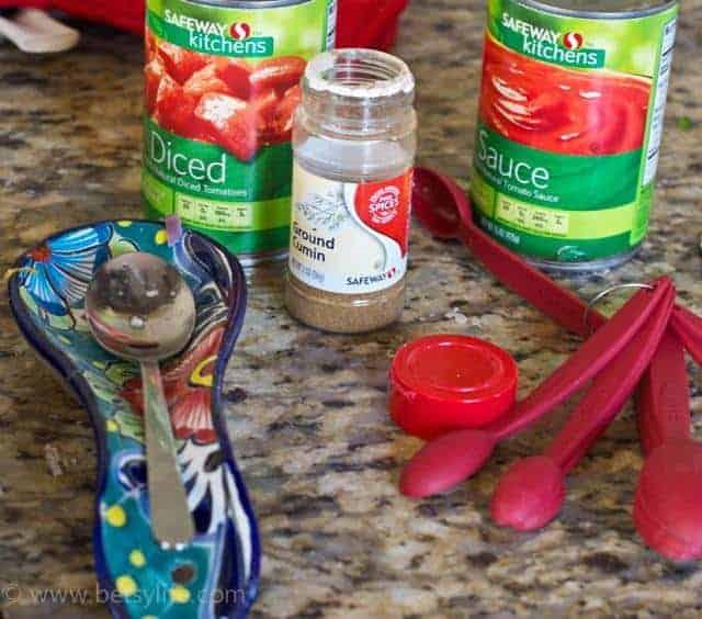 Spicy Turkey Sloppy Joes