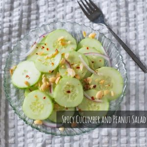 Spicy Cucumber and Peanut Salad