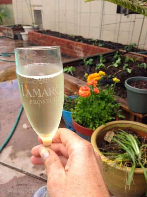 Fresh Garden Salad with La Marca Prosecco