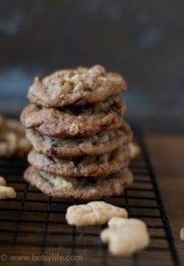 after-school-snack-cookie-recipe