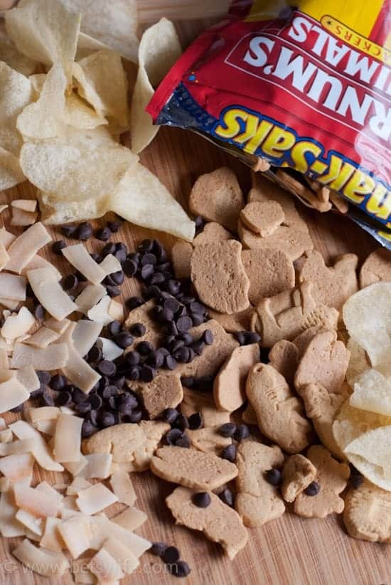coconut flakes, potato chips, chocolate chips and animal crackers on a wooden cutting board