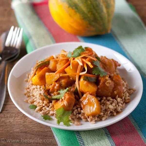 Vegetarian Squash Curry