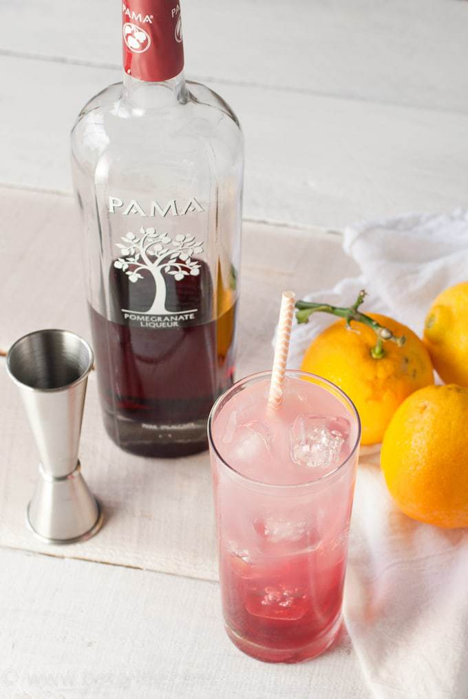 Pomegranate Lemonade Cocktail. Light and refreshing! The perfect sip to enjoy poolside this summer.