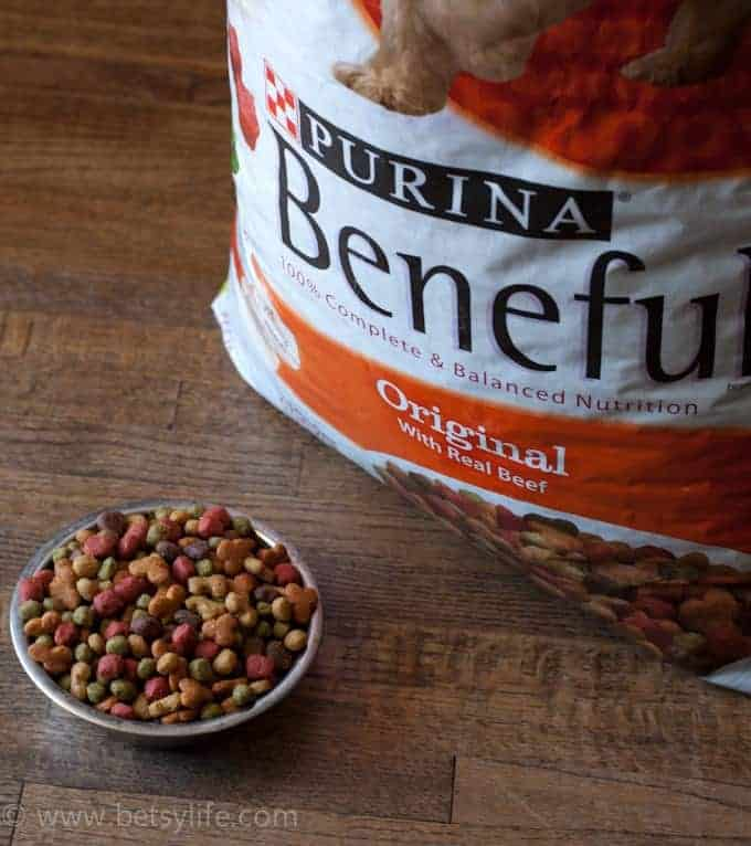 Dinner for Two: Beneful by Purina