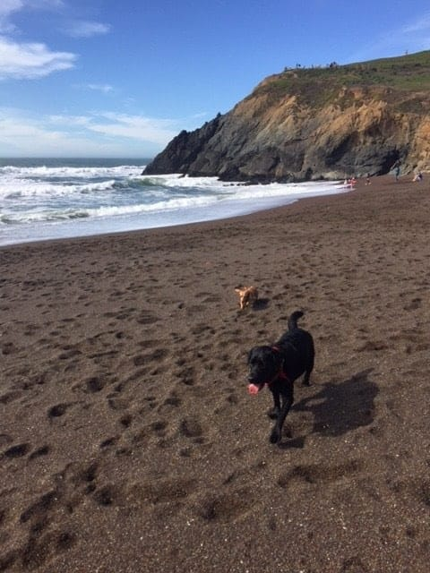 Marin Headlands. Rodeo Beach